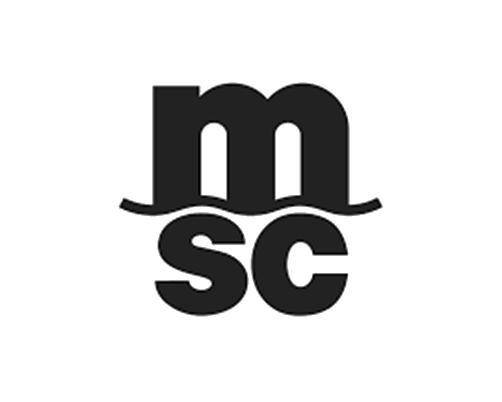 MSC - Bmt Repairs